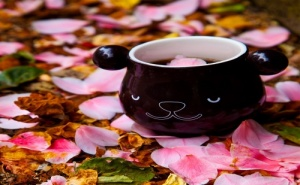 Магическа Чаша за Кафе и Чай – Панда (430Мл.)