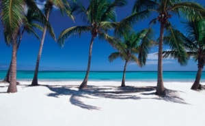 Почивка в Доминикана - Плая Баваро