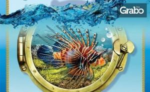 Вход за Двама за Изложба на Екзотични Рибки подводен Свят в Китен