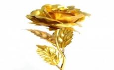<b style=font-size:18px;line-height:25px;>Онлайн магазин Woops.bg</b><br />Красива Позлатена Роза в Подаръчна Кутия