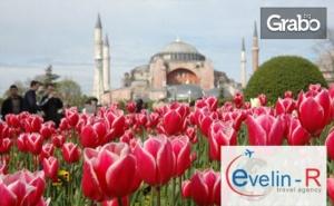 За Фестивала на Лалето до Истанбул! Нощувка със Закуска, Плюс Транспорт