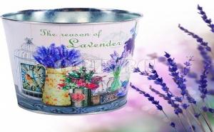 Оригинална Кашпа за Цветя с Лавандули