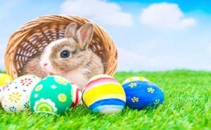Петзвезден Великден на Халкидики - Хотел Alia Palace! Пакет от Три Нощувки, Закуски, Вечери, Празничен Великденски Обяд
