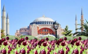 Екскурзия за Фестивалa на Лалето в <em>Истанбул</em>! Транспорт + 4 Нощувки на човек със Закуски от Абв Травелс
