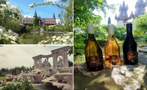 """Билет за Фестивал на Виното в Замъка """"влюбен във Вятъра"""" и Разходка Из Замъка за 17,18 или 19 Юли, с. Равадиново"""