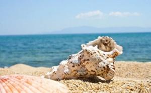 Еднодневна Екскурзия за Плаж в Амолофи, Гърция от Абв Травелс