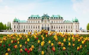 Самолетна Екскурзия до Виена 4 Нощувки